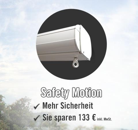 Safety Motion