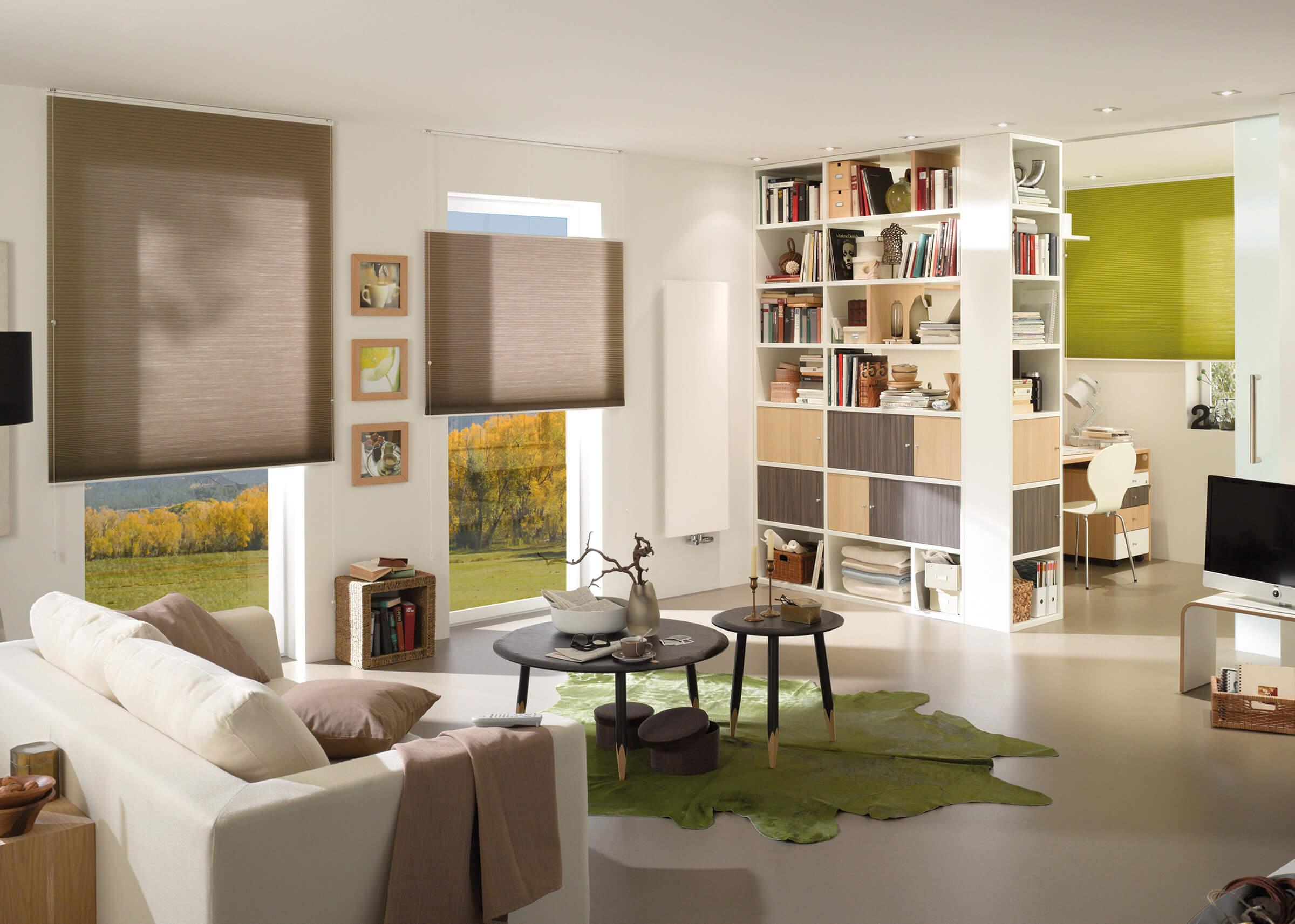 Braune Wabenplissees mit zwei Zugschnüren im Wohnzimmer