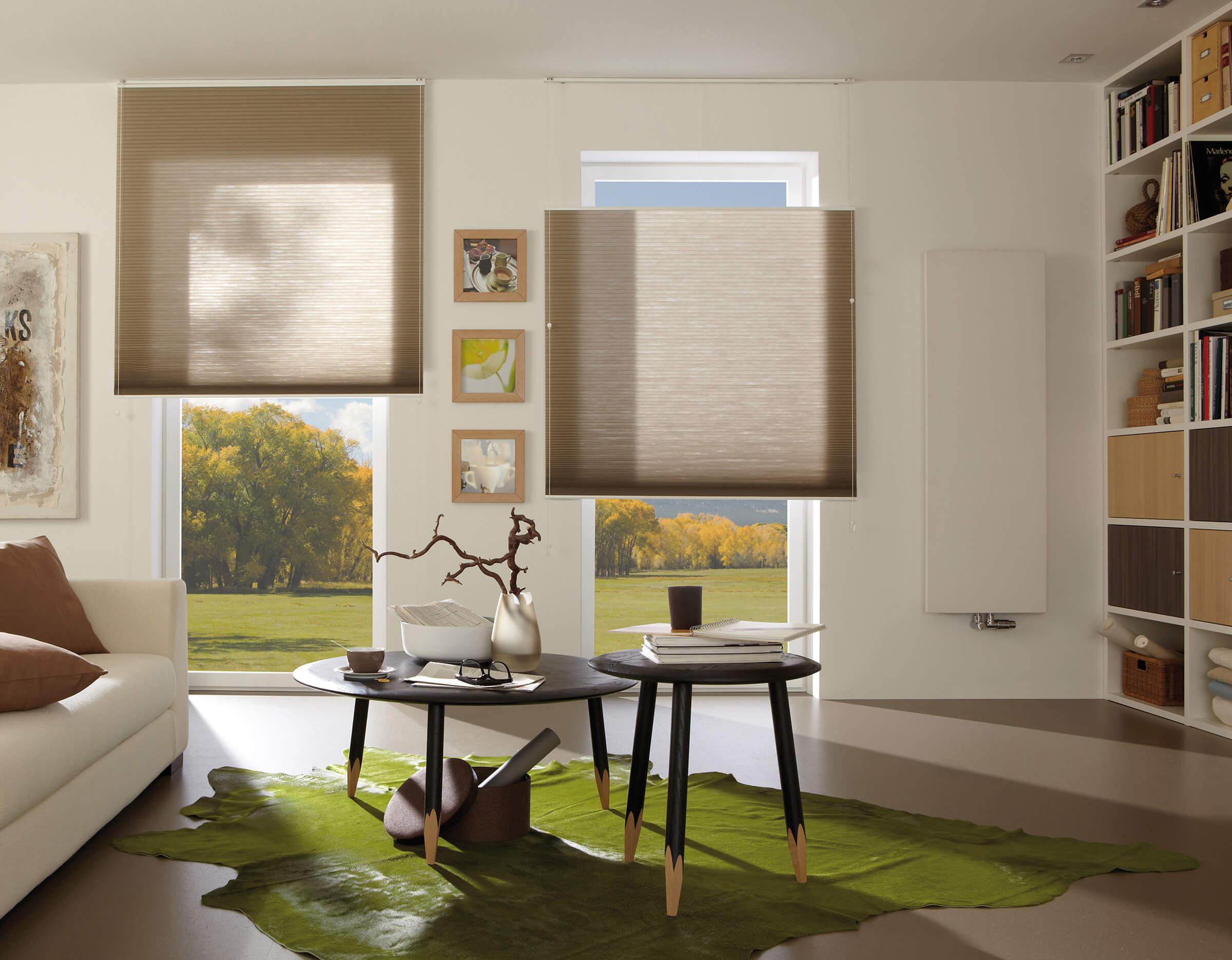 Beige Wabenplissees mit zwei Zugschnüren im Wohnzimmer