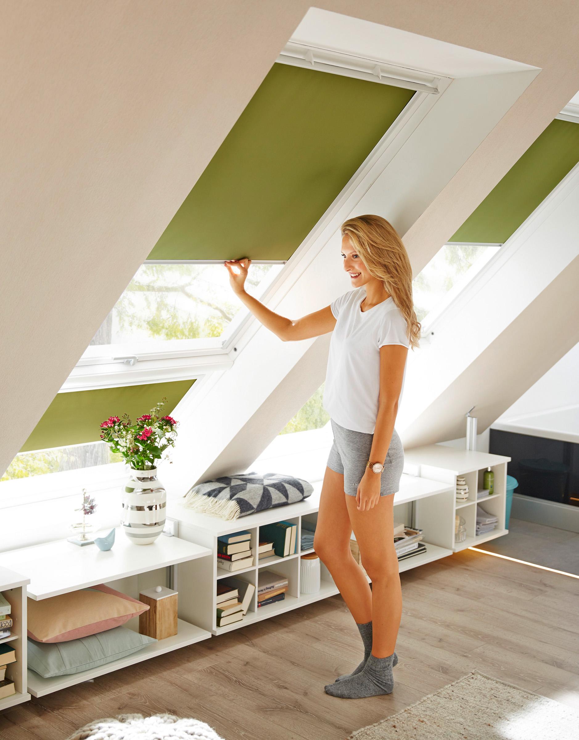 Grünes Velux Dachfenster Rollo im Wohnzimmer