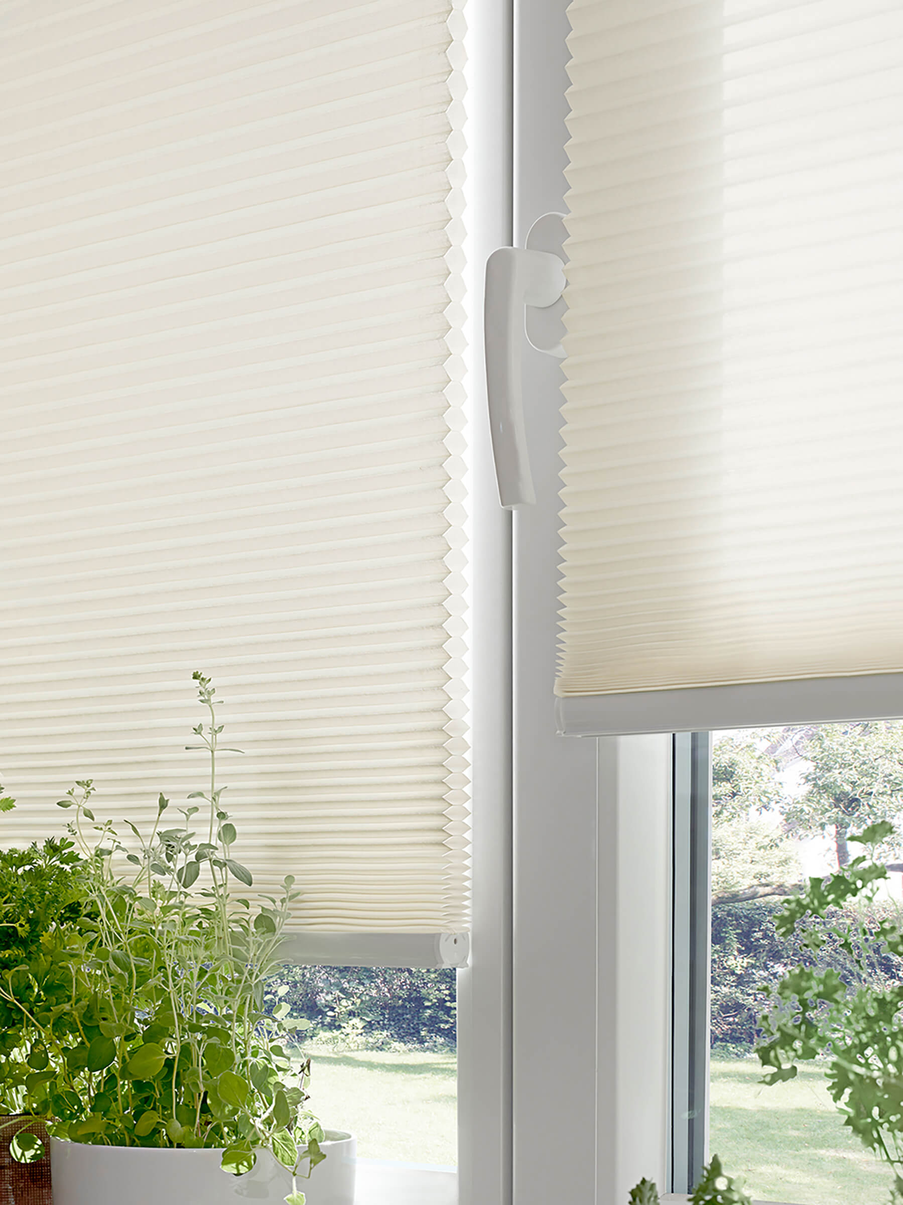 Wabenplissees freihängend mit Schnurzug Wabe im Detail am Fenster