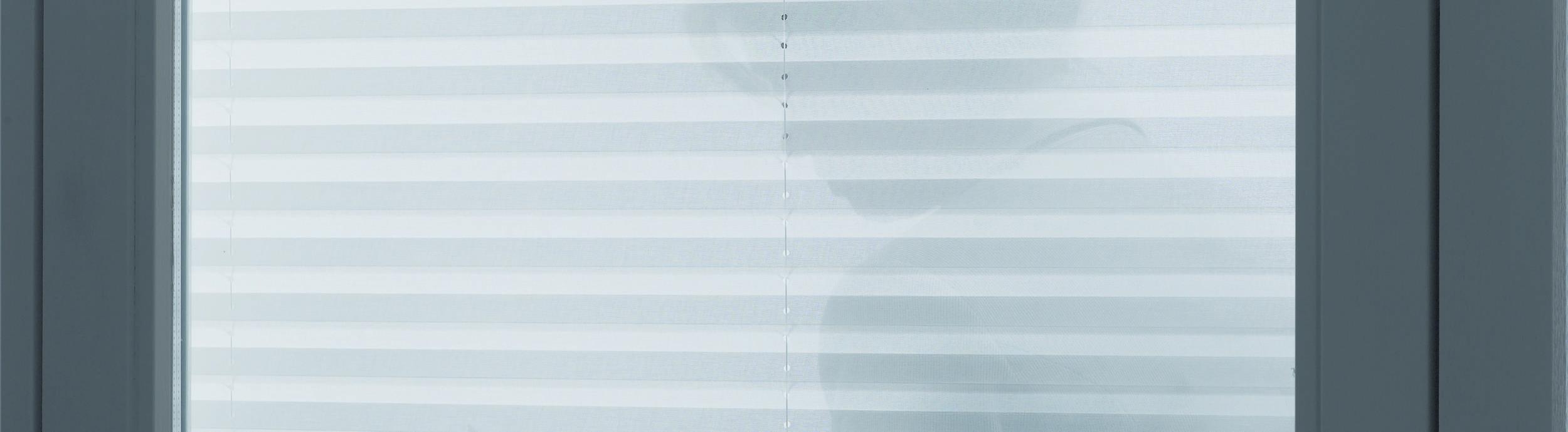 Luxaflex Plissee transparant