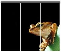 Individualdruck Lamellenvorhang Fotomotiv