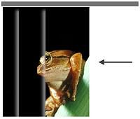 Individualdruck Lamellenvorhang Fotomotiv Vorhang öffnen