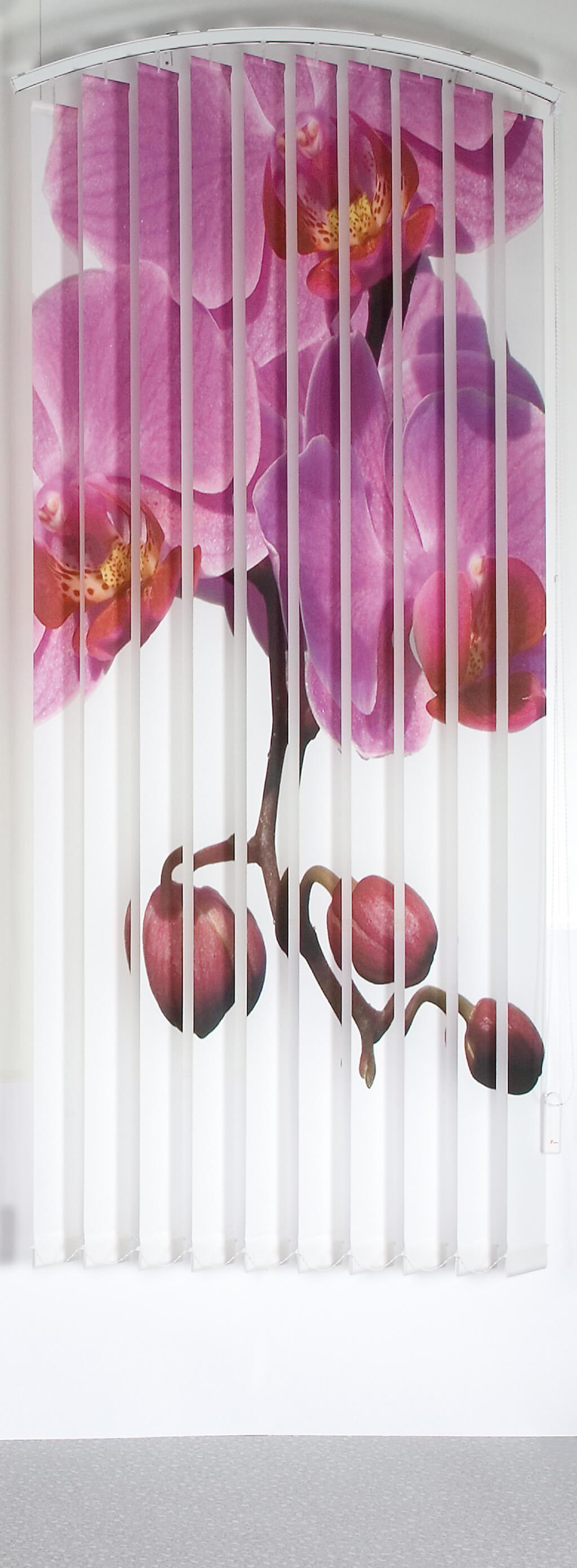 Lamellenvorhang mit Individualdruck: Orchidee