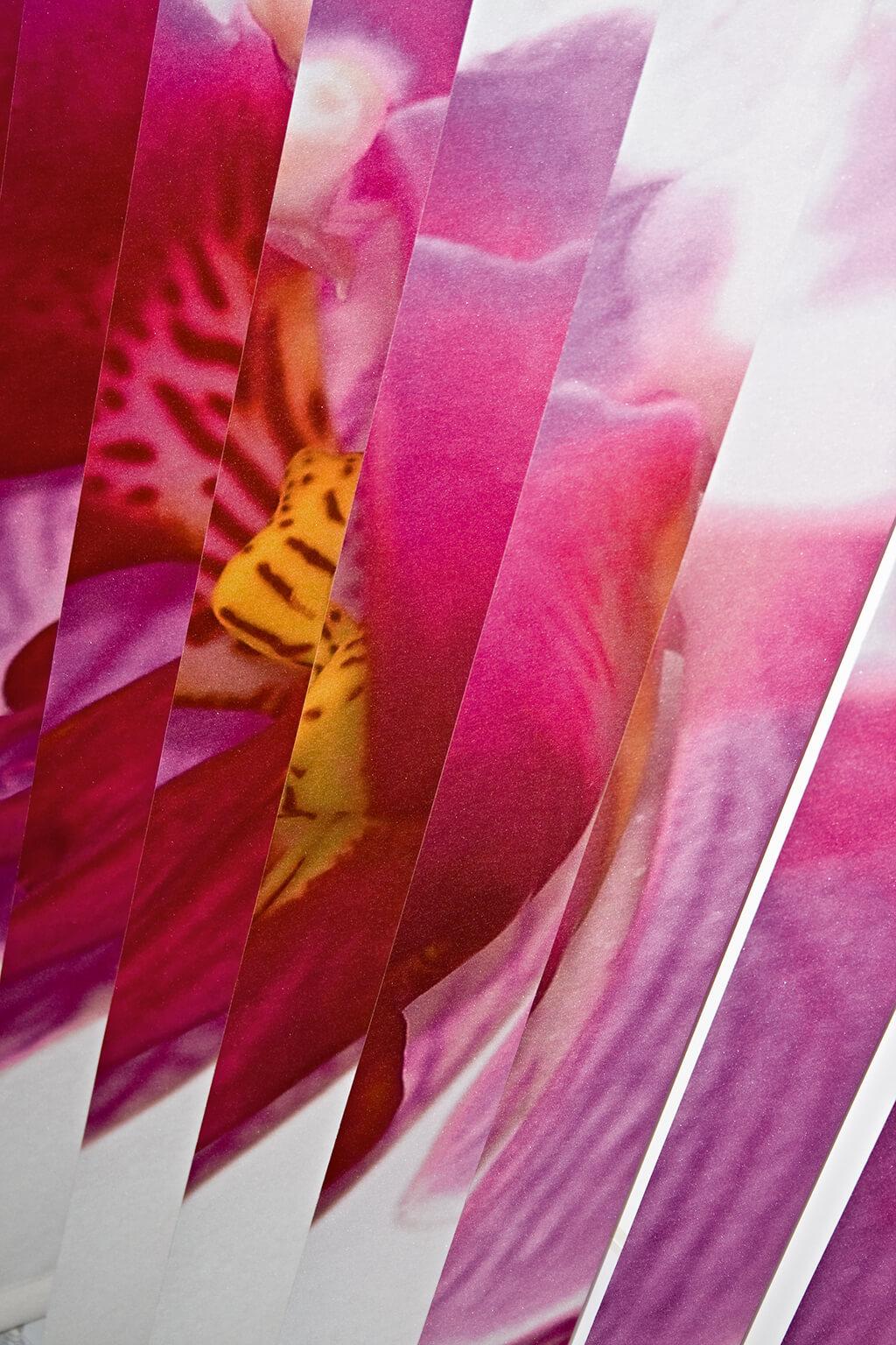 Lamellenvorhang mit Individualdruck: Detailaufnahme einer Orchidee