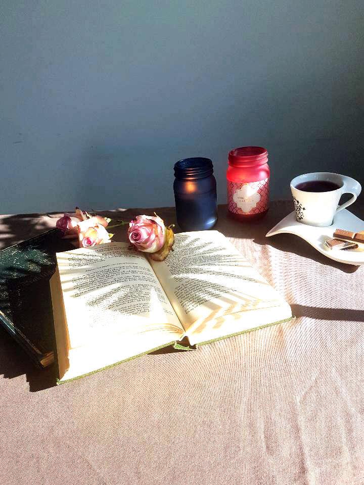 Buch mit Rosen und Tee in der Sonne mit Schattenwurf