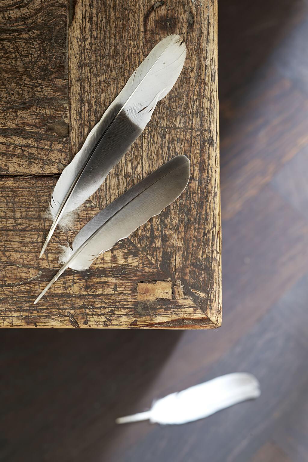 Shabby Chic abgegriffener Holztisch mit Federn